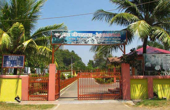 Andaman Lagoons - Popuplar Destination, City Tour, Place to Visit or Sightseeing - Fisheries Museum or Aquarium at Port Blair in Andaman Islands